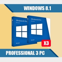 Windows 8.1 Professional 3PC